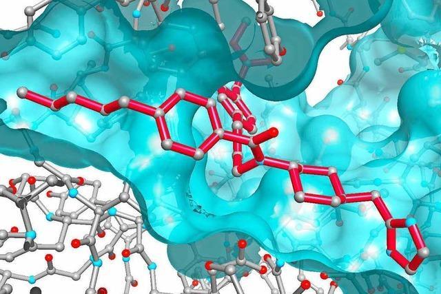 Konzerne bieten Milliarden für Basler Pharmaunternehmen