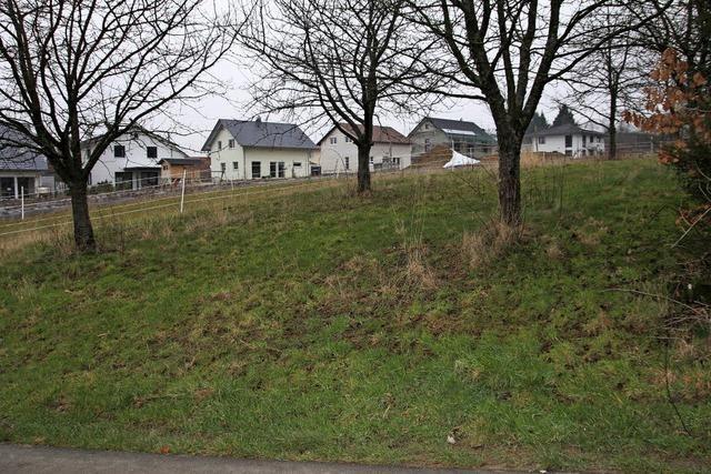 Keine größeren Hürden mehr für das Baugebiet Holzweg III