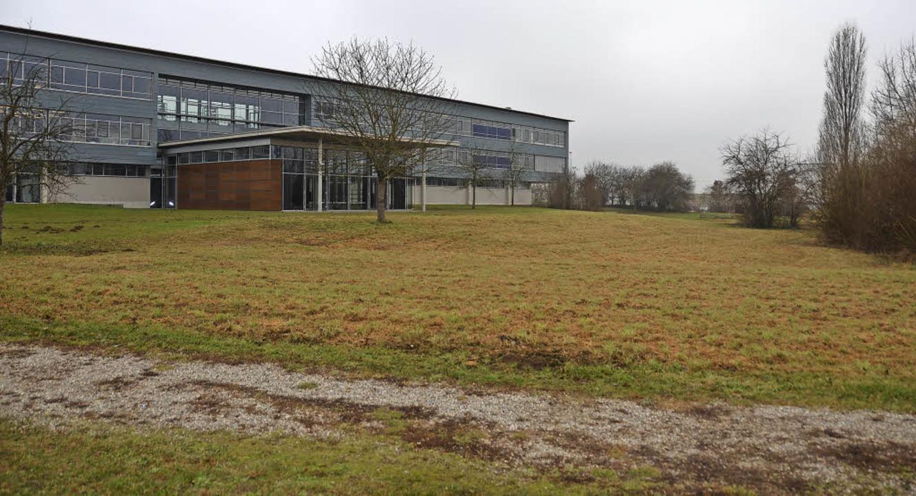 Auf diesem Areal neben dem Kreisgymnas...l die Berufliche Schule gebaut werden.    Foto: Barbara Schmidt