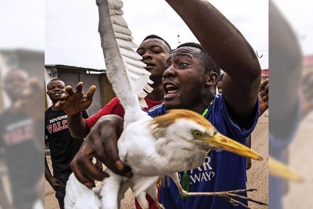 Demonstrationen im Kongo