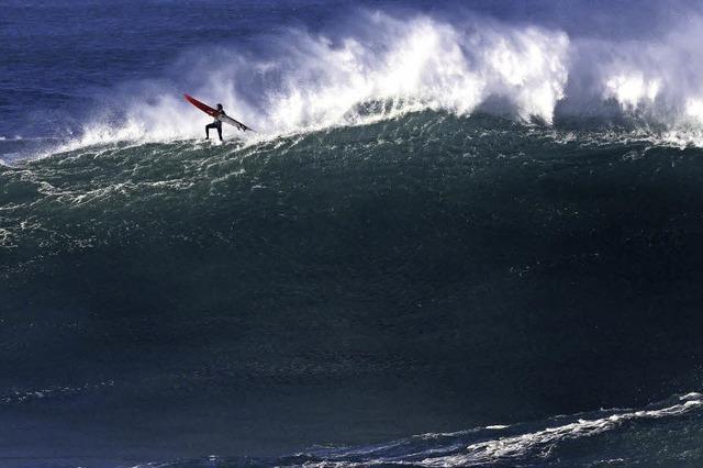 Der Wellenläufer