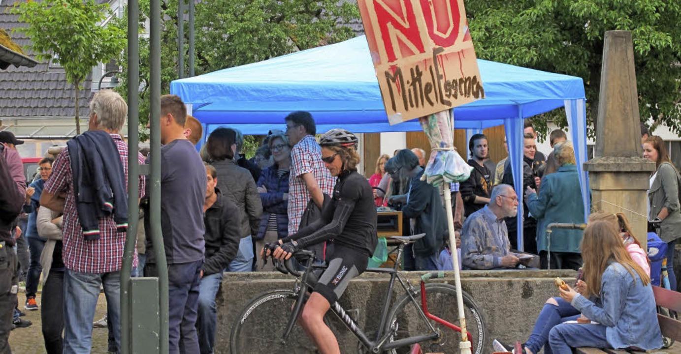 Protest gab's 2016 gegen Pläne für ein Feriendorf im Eggenertal.   | Foto: Archivfoto: Jutta Schütz