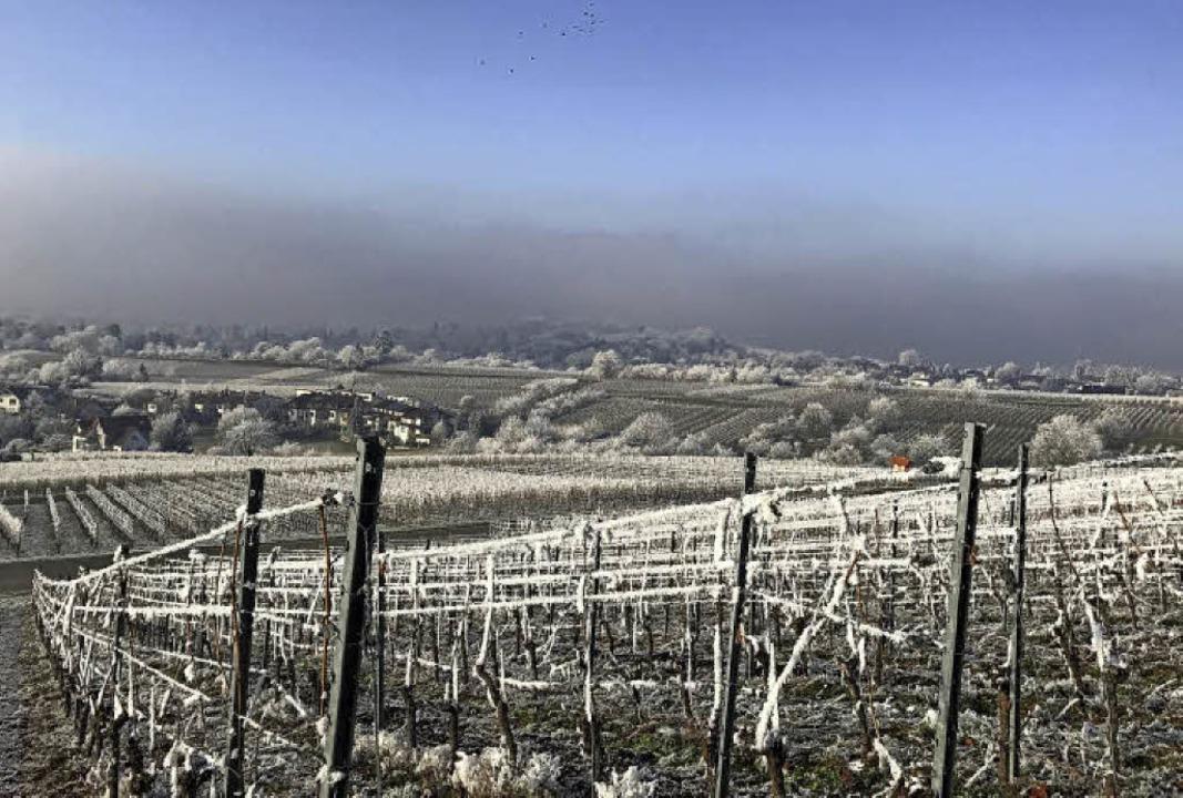 Das neue Jahr hat bereits eine Menge g...aureif und einen traumhaften Ausblick   | Foto: weizenecker