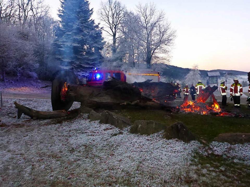Völlig verbrannt ist die Gerichtseiche...Castellberg bei Ballrechten-Dottingen.  | Foto: Polizei