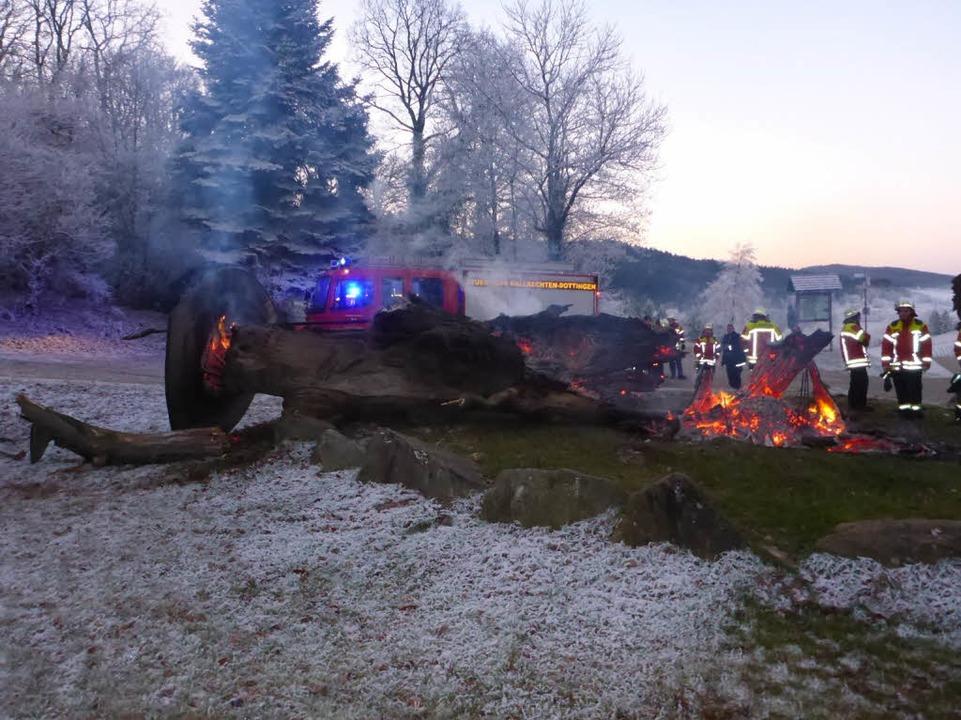 Die Gerichtseiche ist in der Silverste...et worden und brannte vollständig aus.  | Foto: Polizei
