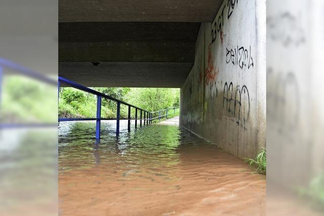 Beim Hochwasserschutz unter Zugzwang