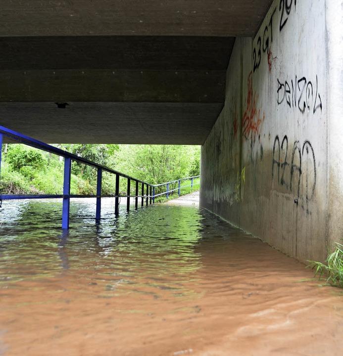 Hochwasser wie hier an der Wiese komme...len der Stadt zwingt das zum Handeln.   | Foto: Susanne Ehmann