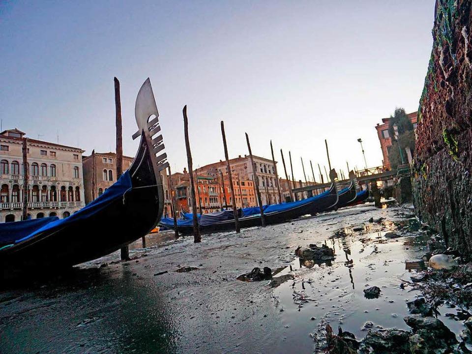 Viele Kanäle in Venedig sind ausgetrocknet, die Gondeln liegen im Matsch.  | Foto: dpa