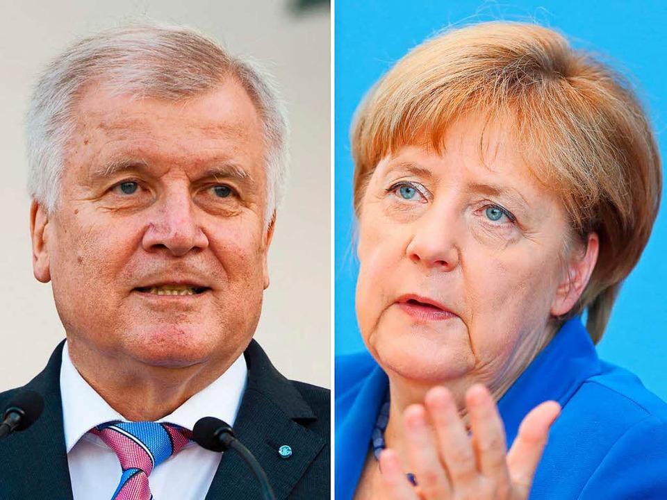 Seehofer und Merkel haben Differenzen    Foto: dpa