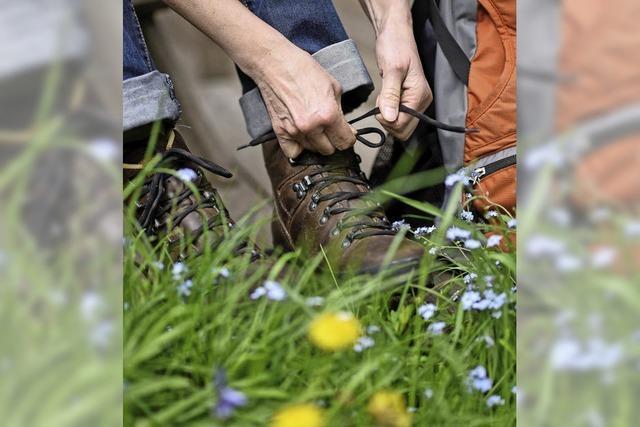 Freude am Wandern in Gemeinschaft mit dem Schwarzwaldverein