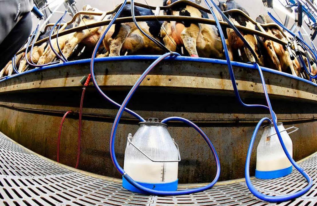 … und auch für  Milch nicht mehr die ermäßigten 7 Prozent?  | Foto: Carsten Rehder