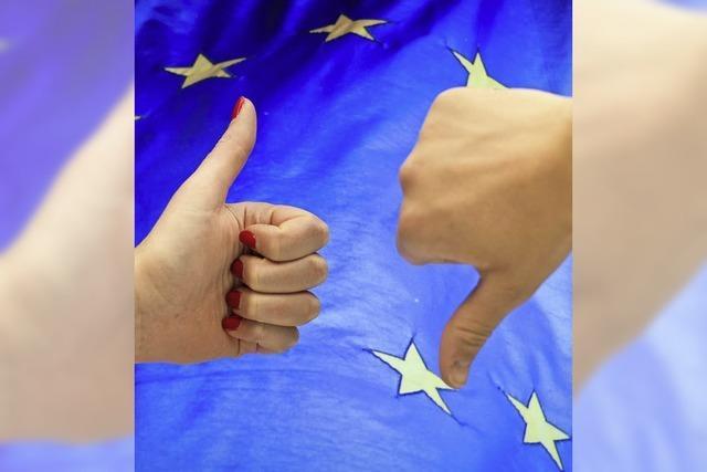 Landkreis trommelt für die europäische Idee