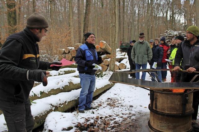 Gute Erlöse für Brennholz