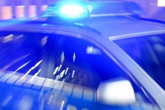 Mann landet mit seinem Auto bei Hasel in einer Wiese