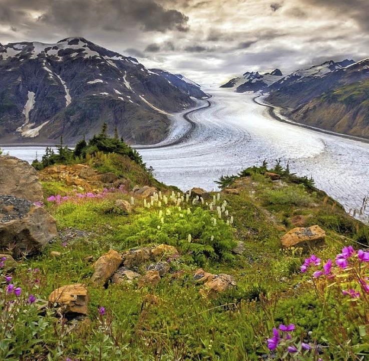 Natur pur    Foto: M. Goldstein