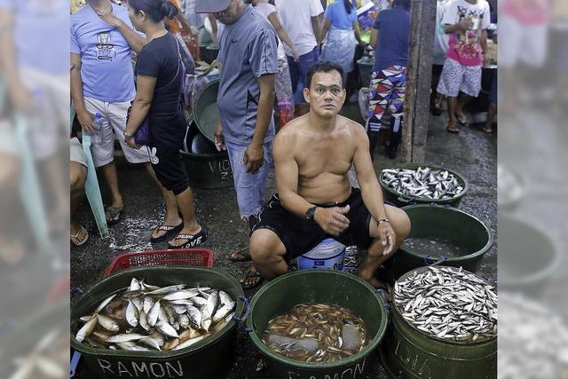 Der Fisch wird knapp - und damit zum Luxusgut