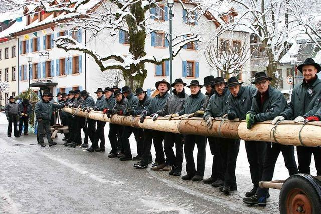 Schönauer stellen Narrenbaum für Zeller Fasnacht