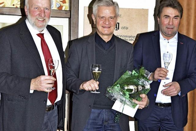Der Wettbewerb auf dem Wein-Markt ist härter geworden