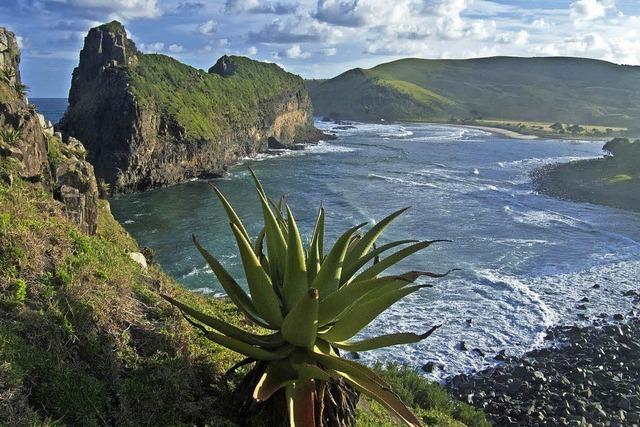 Spektakuläres Afrika