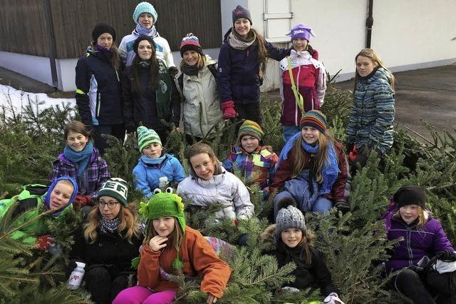 Mädchen-Scouts als eifrige Christbaumsammlerinnen