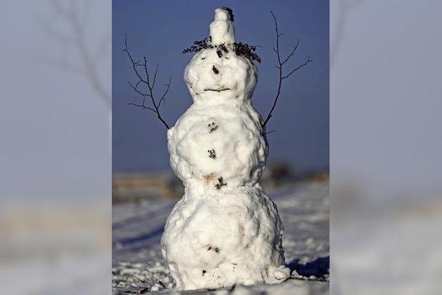 Zug bremst vor Schneemann