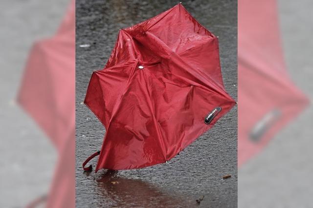 Mit Schirm auf den Kopf eingeschlagen
