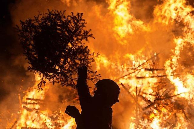 Feuerwehr entfacht Flammenmeer aus Weihnachtsbäumen