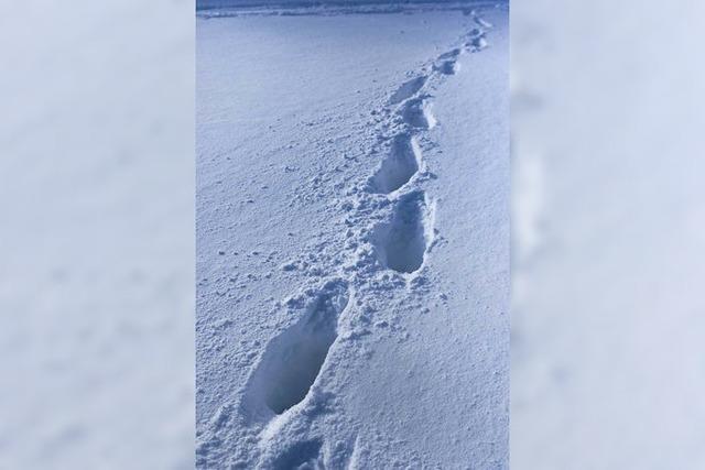 Spuren im Schnee führen Polizei am Wochenende mehrmals zu Tätern