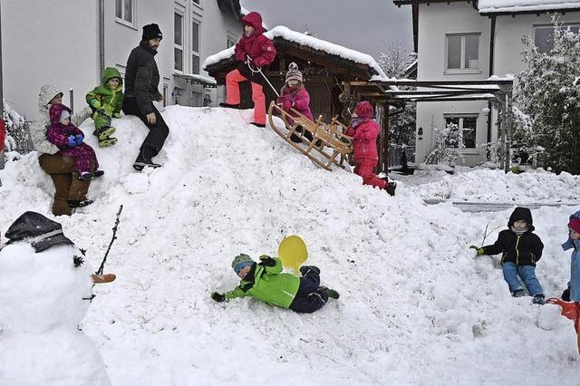 Freie Bahn für Schneehasen