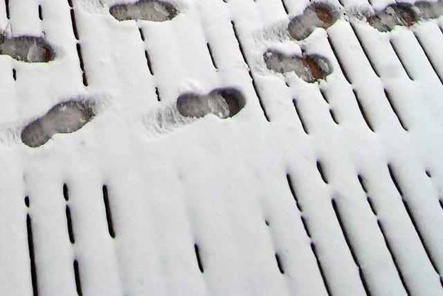 Fußspuren im Schnee führen Polizei zu jugendlichen Einbrechern