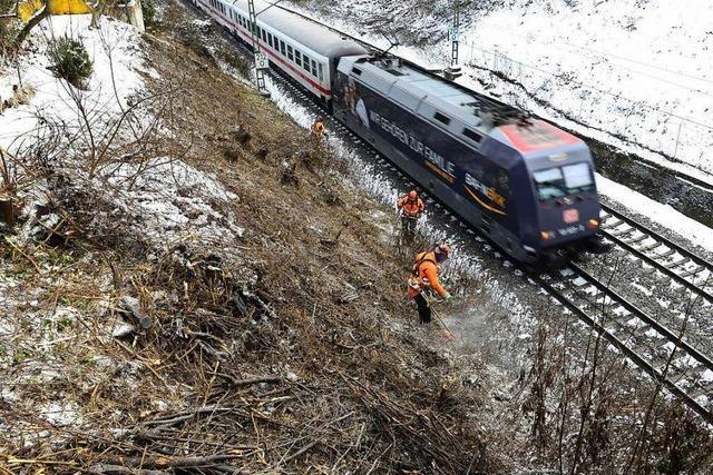 Bahn rodet beidseitig den Hang an der Rheintallinie