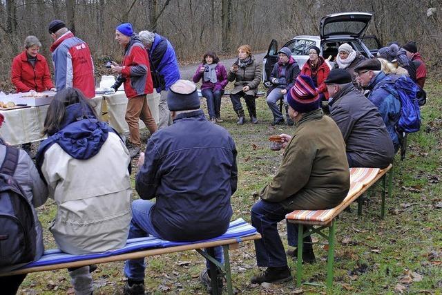 Winterwandern im Rheinwald ist gefragt