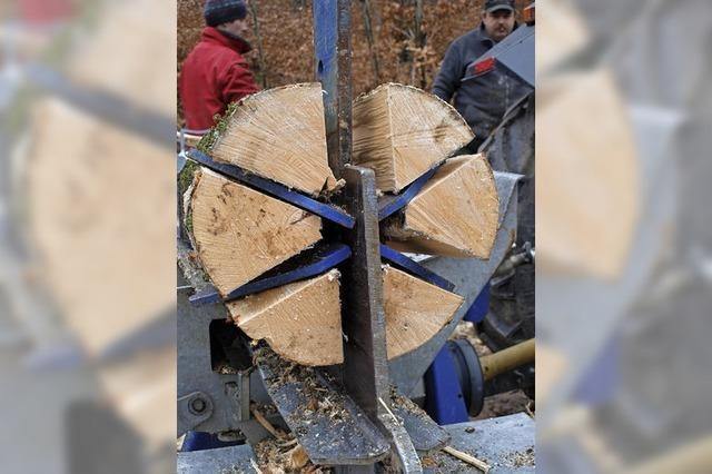 Holz, Badnerlied und Wäldersinn