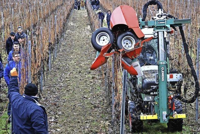 Rebholzzieher kann die Arbeit im Weinberg erleichtern