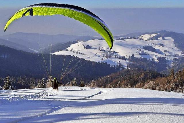 Warum das Wild unter Wintersportlern leidet