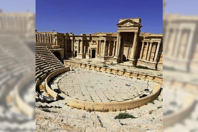 Neue Verwüstungen im antiken Palmyra