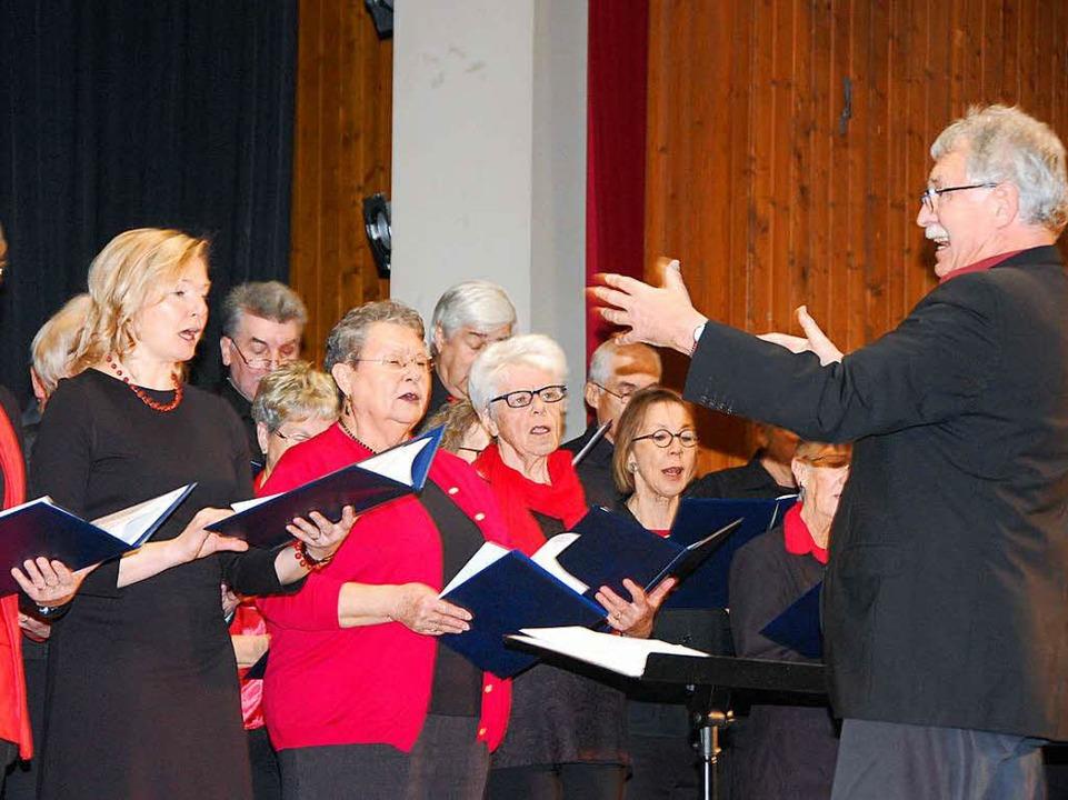 Sänger und Sängerinnen gestalteten das Rahmenprogramm.    Foto: Herbert Frey