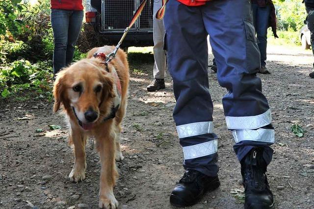 Suchaktion in Ettenheimmünster: Demente Frau wird vermisst