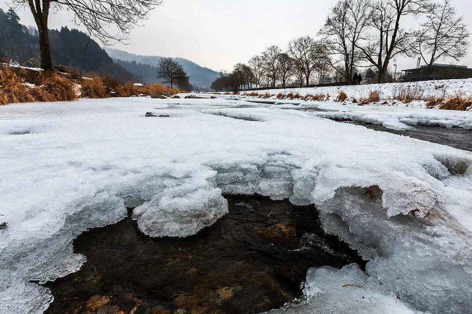 In Freiburg sind Teile der Dreisam zugefroren. (Foto: Carlotta Huber)