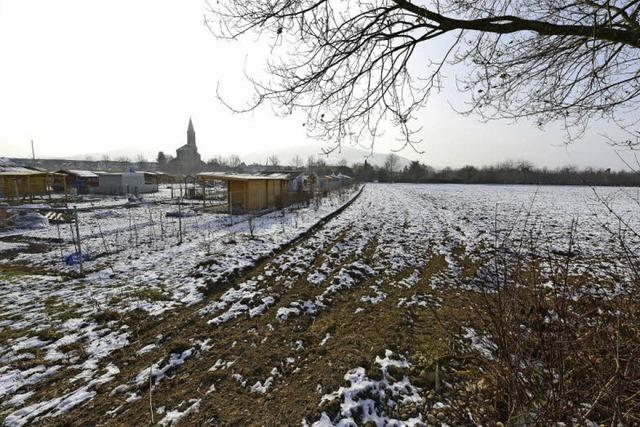 Bürgerinitative wehrt sich gegen Vergrößerung der Kleingärten