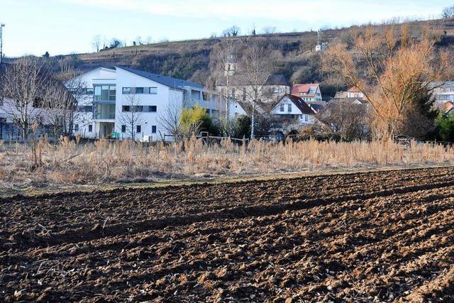 Bauwillige kehren Wasenweiler den Rücken
