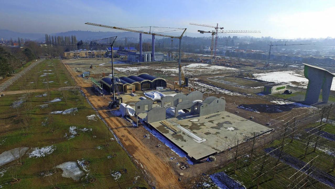 Luftbild der Kita+ im zukünftigen Bürgerpark    Foto: Landesgartenschau GmbH