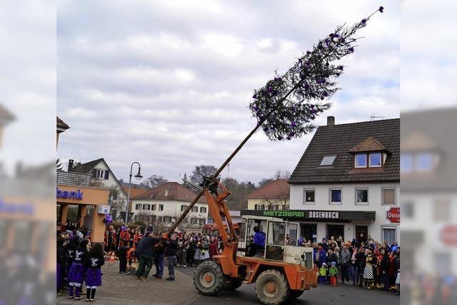 Viele feierten den Narrenbaum