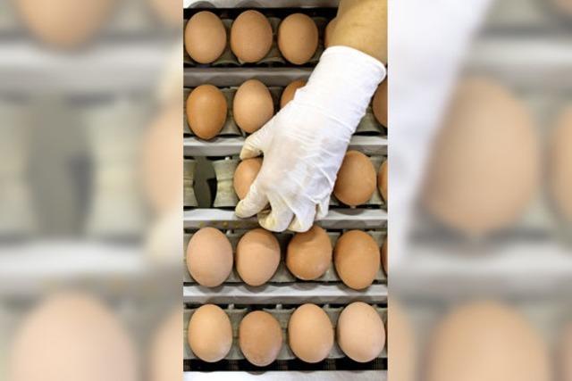 Wann ist ein Ei ein Freilandei?