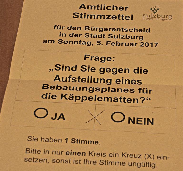 Bürgerentscheid Sulzburg Bebauungsplan Käppelematten  | Foto: Martin Pfefferle