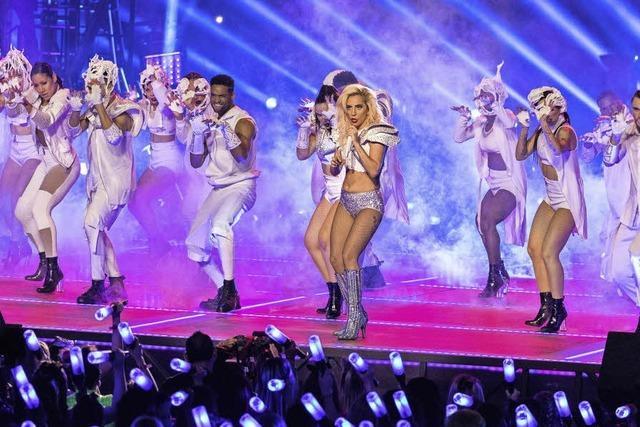 Lady Gaga will die USA kitten