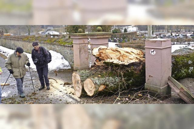 Millimeterarbeit am Schönauer Friedhof