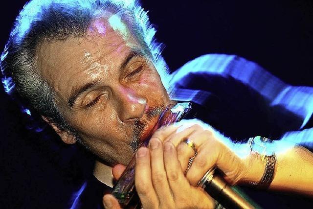 Meister der Bluesharp