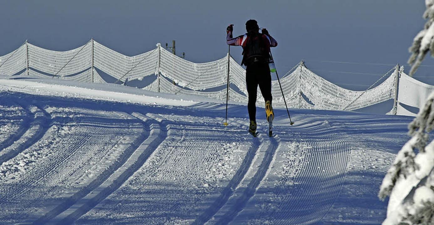 Der Rucksacklauf bleibt ein Abenteuer,...0; 50 statt 100 Kilomter lang ist.      | Foto: ruoff