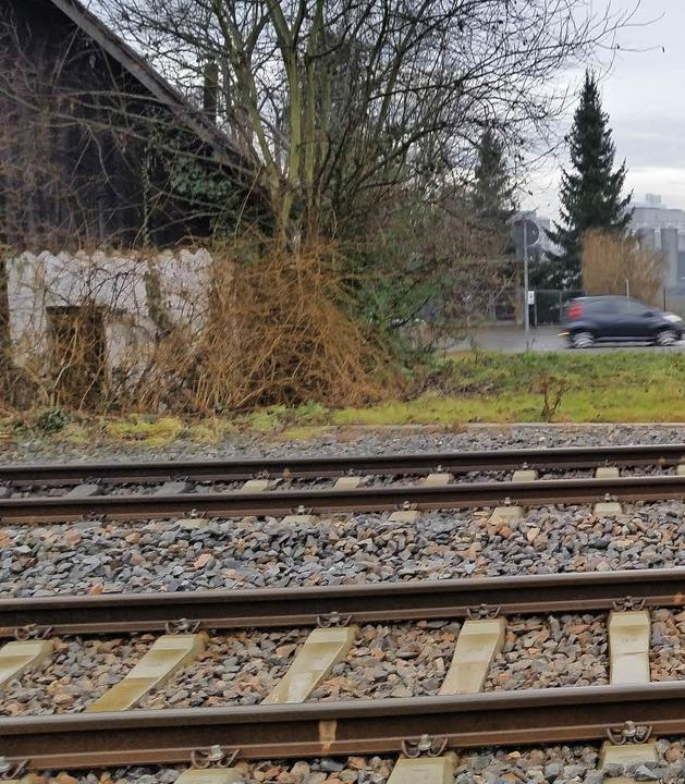 Bahngleise im Hornacker ohne Zaun oder Absperrung  | Foto: ZVG